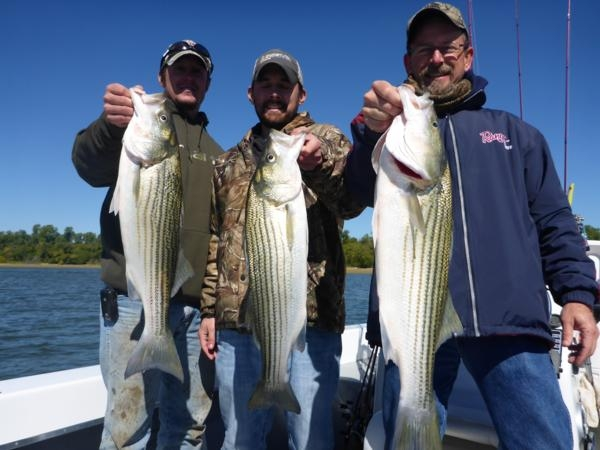 Lake Texoma Striper caught with Guide Stephen Andre